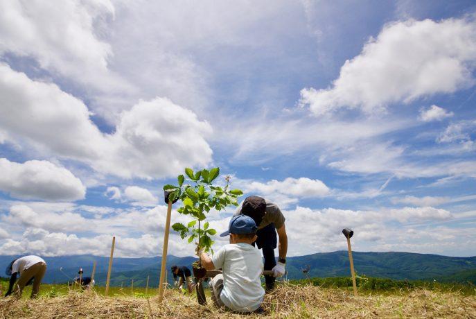DSC02116 687x460 - 名刺を森に還すプロジェクト「Scan for Trees」 2年間で計2542本の木を岩手県宮古市に植樹 〜植栽地を宮城県大崎市に移し、今後も「名刺の森」を広げていきます〜