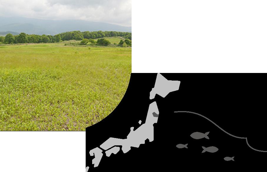 img miyako1 - Scan for Trees | CSV活動